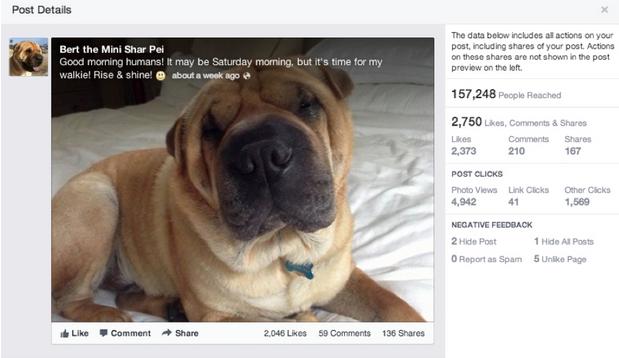 Facebook nieuwe layout statistieken