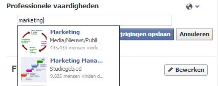 Facebook invoeren Professionele Vaardigheden