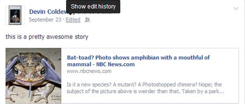 Historie zien van een gewijzigd Facebook Bericht